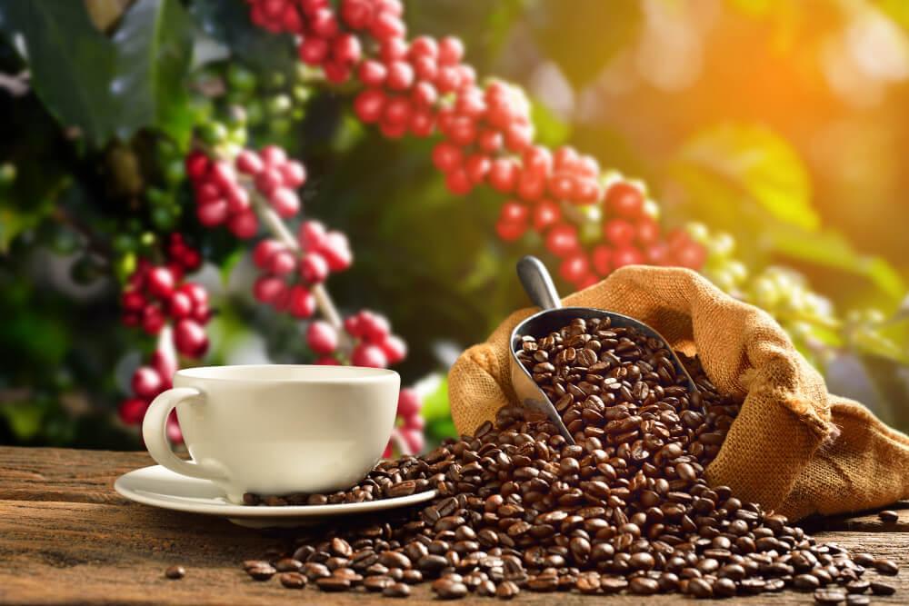 Чашка з кавовими зернами
